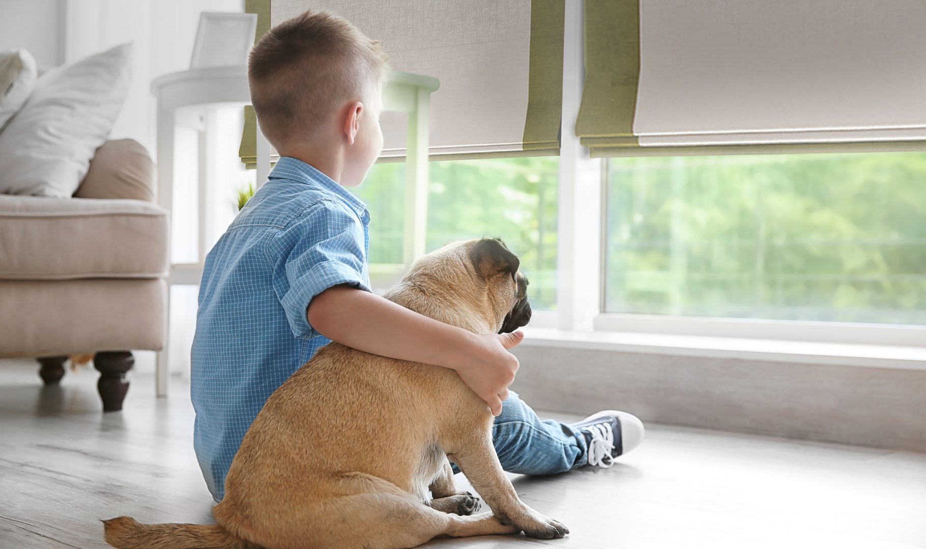 Cordless Roman shades with a boy and a dog