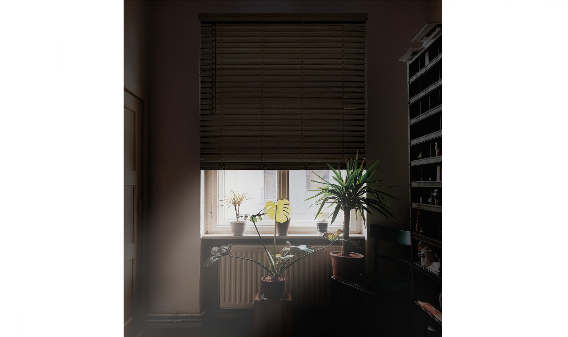SmartPrivacy® blinds for the best in light and privacy control